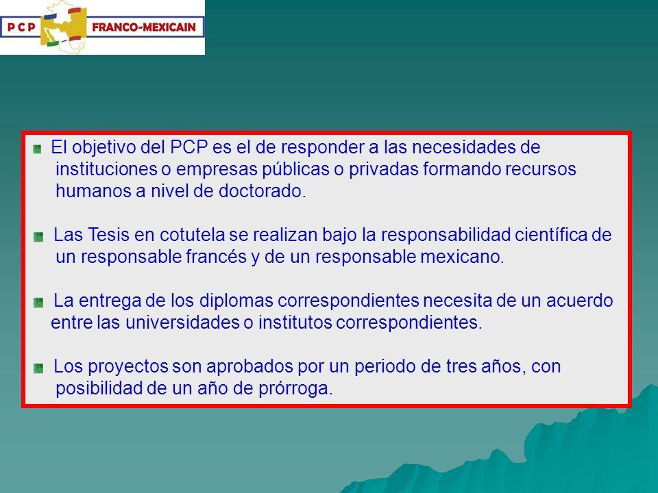 El objetivo del PCP es el de responder a las necesidades de instituciones o empresas públicas o privadas formando recursos humanos a nivel de doctorad