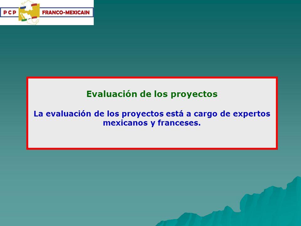 Coordinación del PCP: La coordinación del PCP está bajo la responsabilidad de dos coordinadores, uno por la parte mexicana y otro por la parte francesa: Dr.