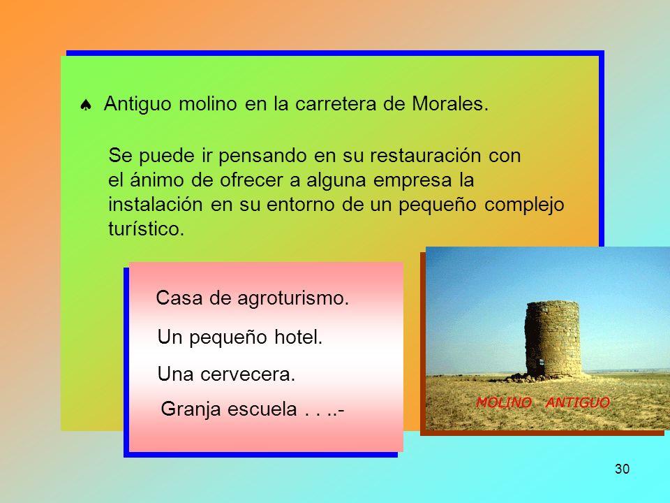 29 Excavación arqueológica en Zalengas... Comunicación a: Colegios, Institutos... Grupos de arqueología. Público en general.- Revistas especializadas.