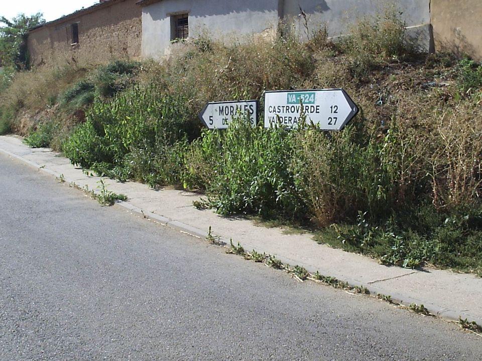 33 7.1.1.- Actuaciones en el pueblo. 1.- Embellecimiento de todos los accesos al pueblo. Sustituir los cardos de los lados de carreteras por retama, a
