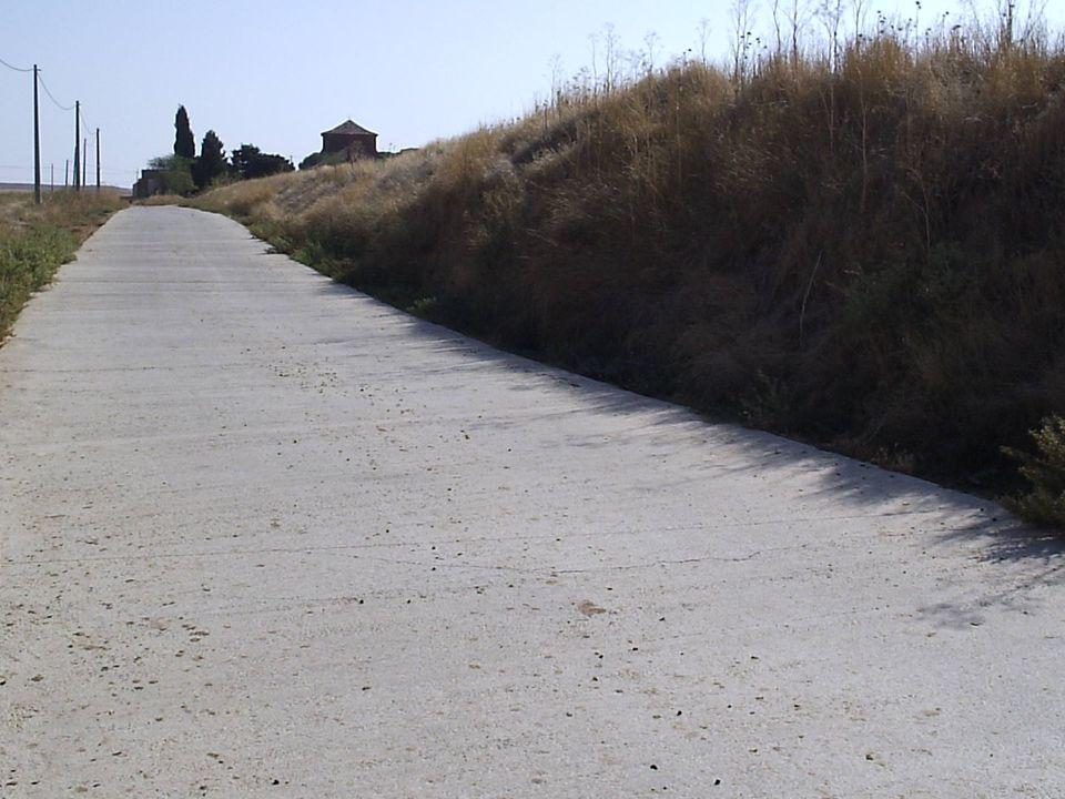 40 Poner árboles en el llamado Camino de Palazuelo, al menos hasta la ermita. Pensando sobre todo en las personas mayores que en verano acuden a la er