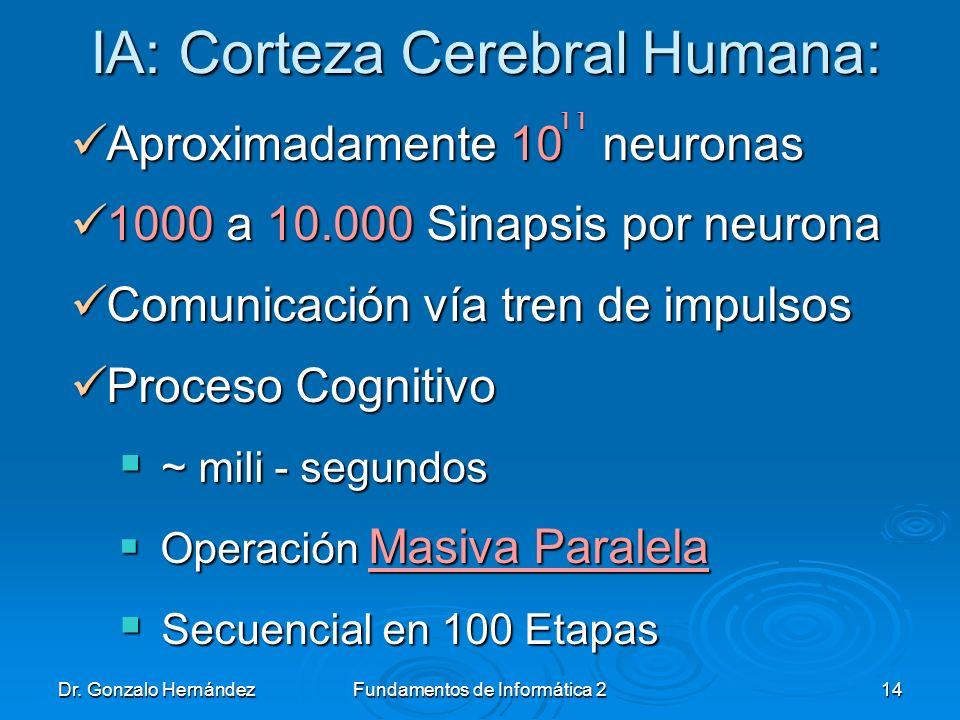 Dr. Gonzalo HernándezFundamentos de Informática 214 IA: Corteza Cerebral Humana: Aproximadamente 10 neuronas Aproximadamente 10 neuronas 1000 a 10.000