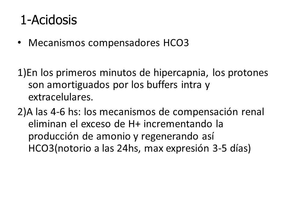 Mecanismos compensadores HCO3 1)En los primeros minutos de hipercapnia, los protones son amortiguados por los buffers intra y extracelulares. 2)A las