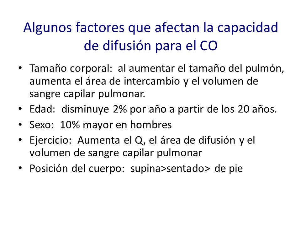 Algunos factores que afectan la capacidad de difusión para el CO Tamaño corporal: al aumentar el tamaño del pulmón, aumenta el área de intercambio y e