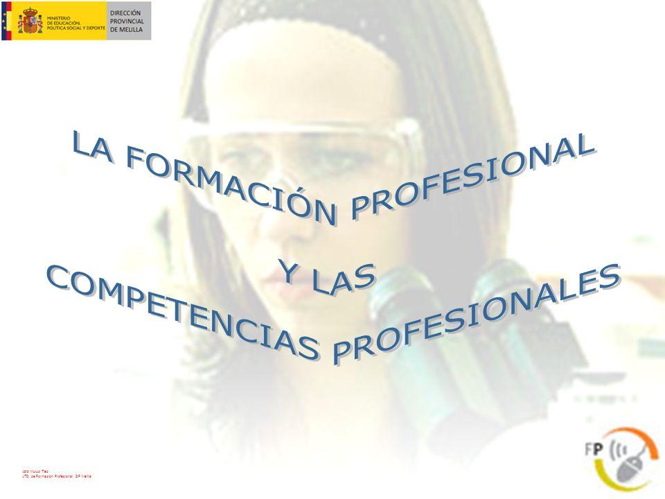 Las Cualificaciones Profesionales se Agrupan en: 26 Familias Profesionales 5 Niveles de Cualificación Aziz Mulud Tieb ATD de Formación Profesional.