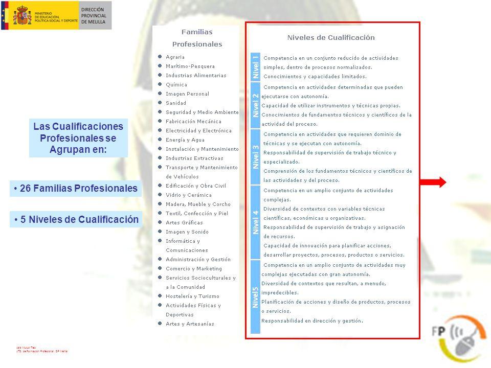 Las Cualificaciones Profesionales se Agrupan en: 26 Familias Profesionales 5 Niveles de Cualificación Aziz Mulud Tieb ATD de Formación Profesional. DP