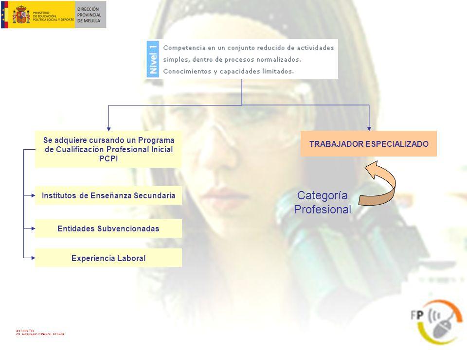 TÉCNICO Categoría Profesional Se adquiere cursando un Ciclo Formativo de Grado Medio CFGM Institutos de Enseñanza Secundaria Experiencia Laboral Se accede: Directamente con el Graduado en E.S.O.