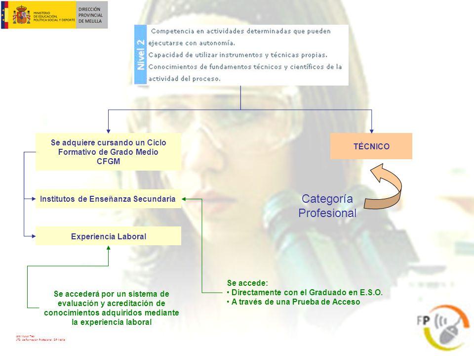 TÉCNICO Categoría Profesional Se adquiere cursando un Ciclo Formativo de Grado Medio CFGM Institutos de Enseñanza Secundaria Experiencia Laboral Se ac