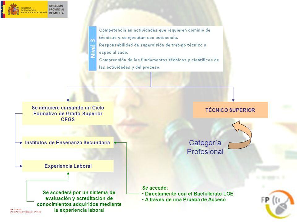 TÉCNICO SUPERIOR Categoría Profesional Se adquiere cursando un Ciclo Formativo de Grado Superior CFGS Institutos de Enseñanza Secundaria Experiencia L