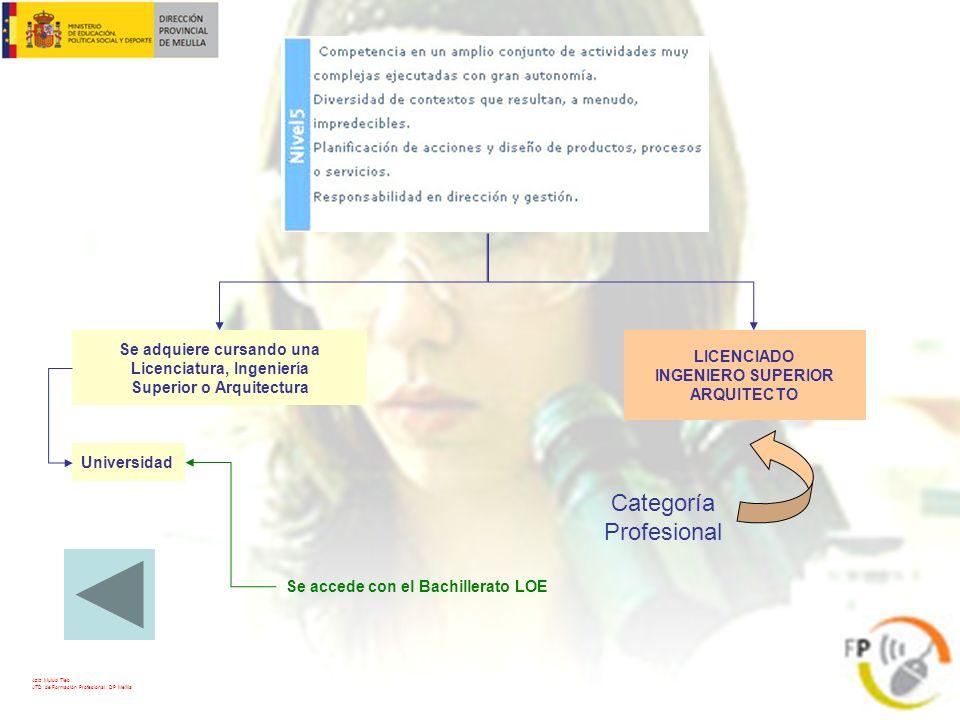 LICENCIADO INGENIERO SUPERIOR ARQUITECTO Categoría Profesional Se adquiere cursando una Licenciatura, Ingeniería Superior o Arquitectura Universidad S