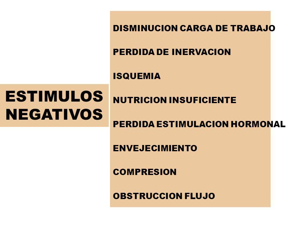 ESTIMULOS NEGATIVOS DISMINUCION CARGA DE TRABAJO PERDIDA DE INERVACION ISQUEMIA NUTRICION INSUFICIENTE PERDIDA ESTIMULACION HORMONAL ENVEJECIMIENTO CO