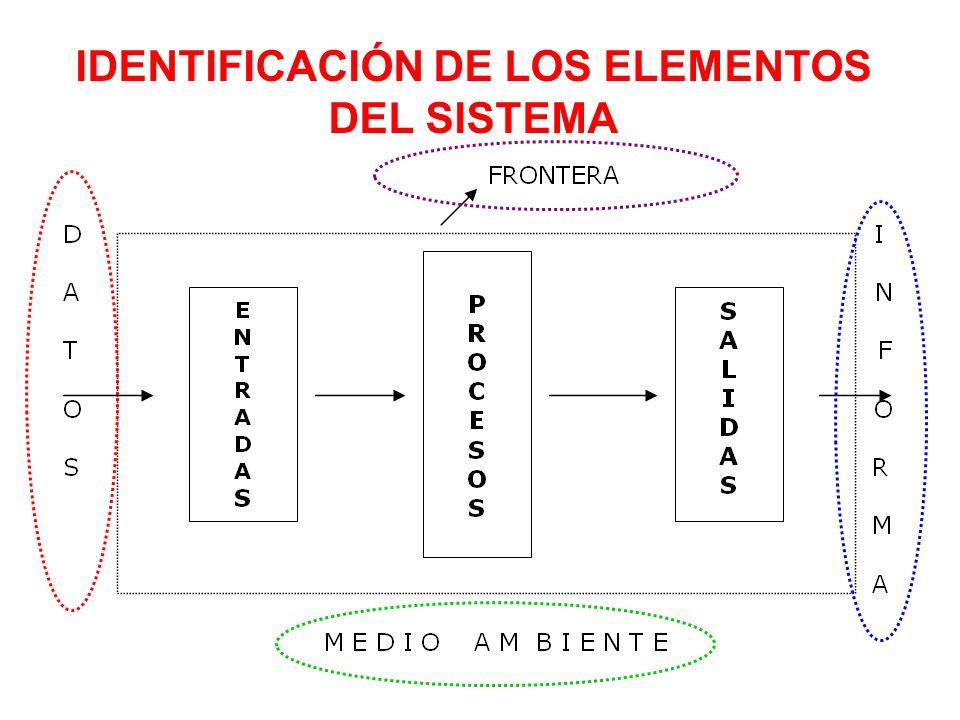 IDENTIFICACIÓN DE LOS ELEMENTOS DEL SISTEMA