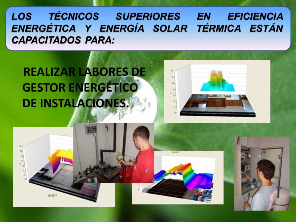 REALIZAR LABORES DE GESTOR ENERGÉTICO DE INSTALACIONES. LOS TÉCNICOS SUPERIORES EN EFICIENCIA ENERGÉTICA Y ENERGÍA SOLAR TÉRMICA ESTÁN CAPACITADOS PAR