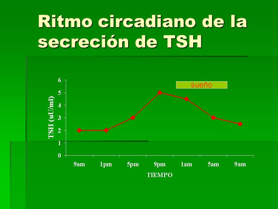 Ritmo circadiano de la secreción de TSH sueño
