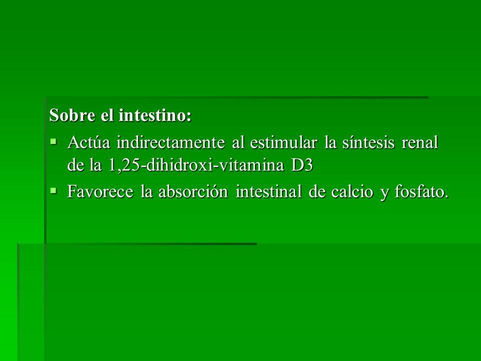Sobre el intestino: Actúa indirectamente al estimular la síntesis renal de la 1,25-dihidroxi-vitamina D3 Actúa indirectamente al estimular la síntesis