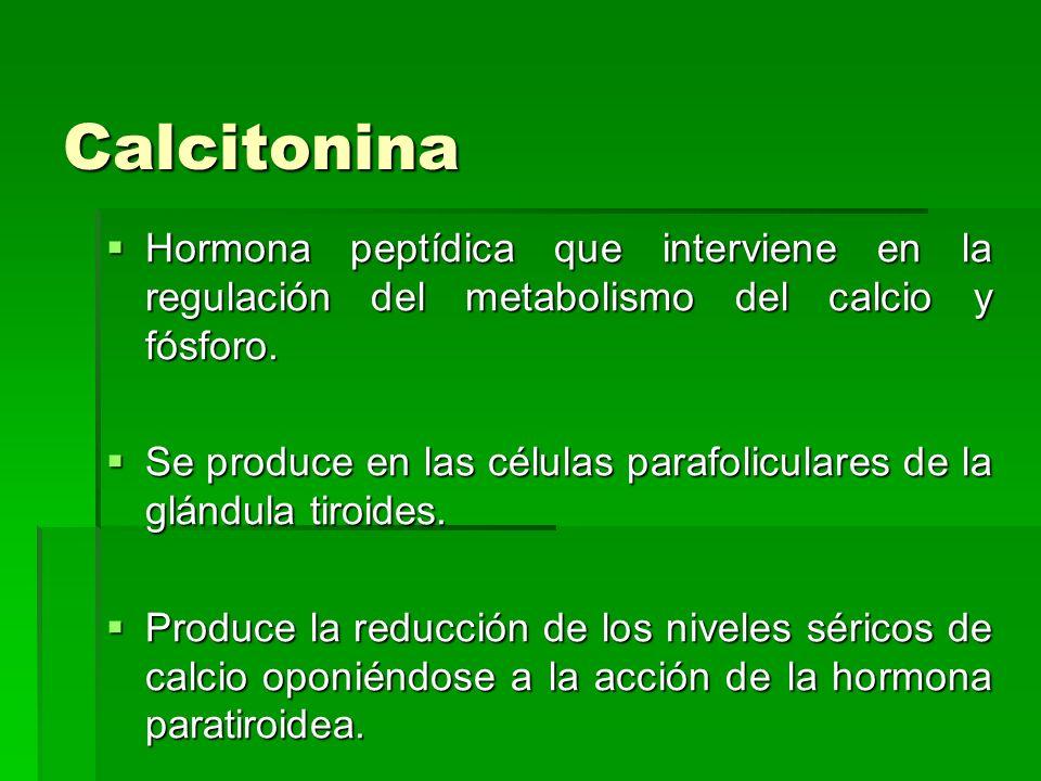 Calcitonina Hormona peptídica que interviene en la regulación del metabolismo del calcio y fósforo. Hormona peptídica que interviene en la regulación