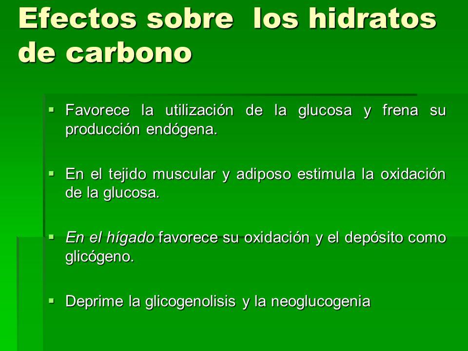 Efectos sobre los hidratos de carbono Favorece la utilización de la glucosa y frena su producción endógena. Favorece la utilización de la glucosa y fr