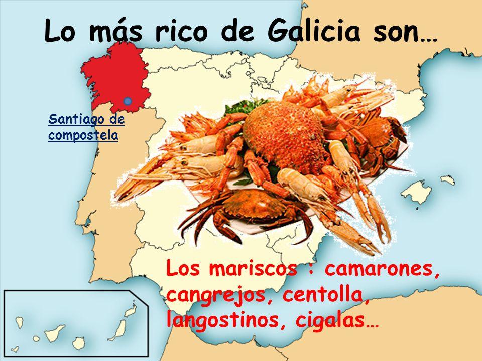 Lo más rico de Galicia son… Los mariscos : camarones, cangrejos, centolla, langostinos, cigalas… Santiago de compostela