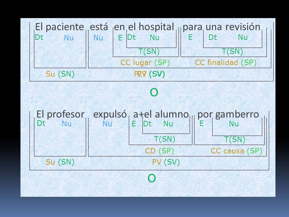 El paciente está en el hospital para una revisión El profesor expulsó a+el alumno por gamberro O Su (SN)P¿? (SV) Nu CC lugar (SP) Nu Dt Nu O Su (SN) C