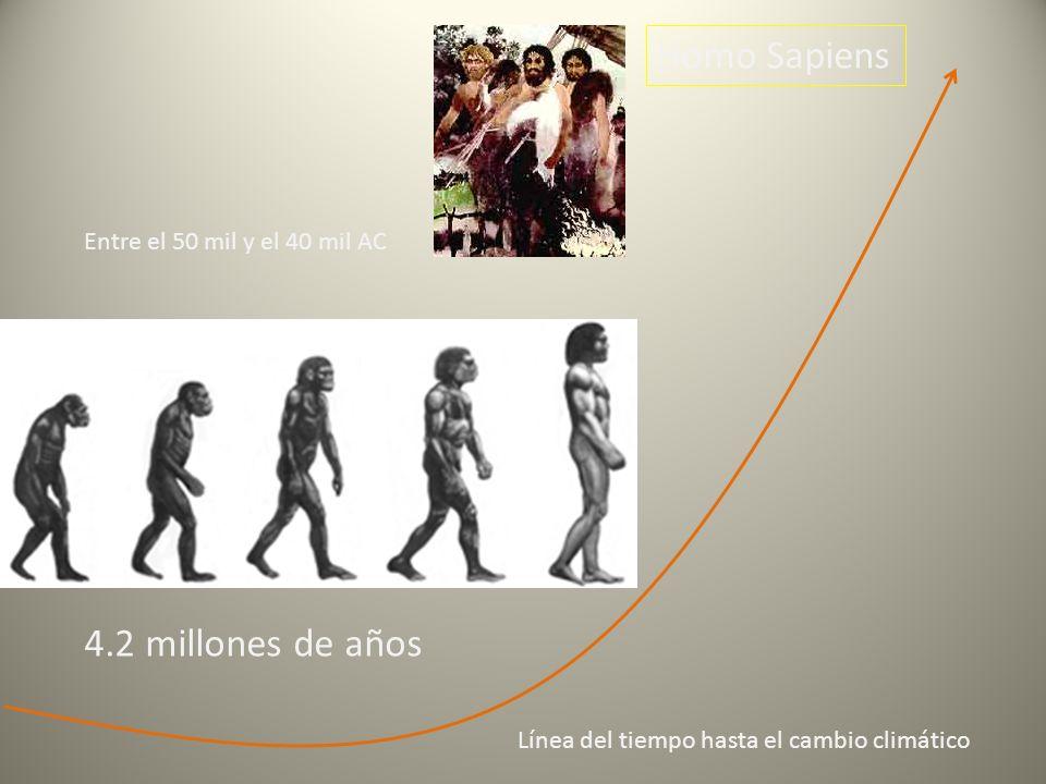 Homo Sapiens 4.2 millones de años Entre el 50 mil y el 40 mil AC Línea del tiempo hasta el cambio climático