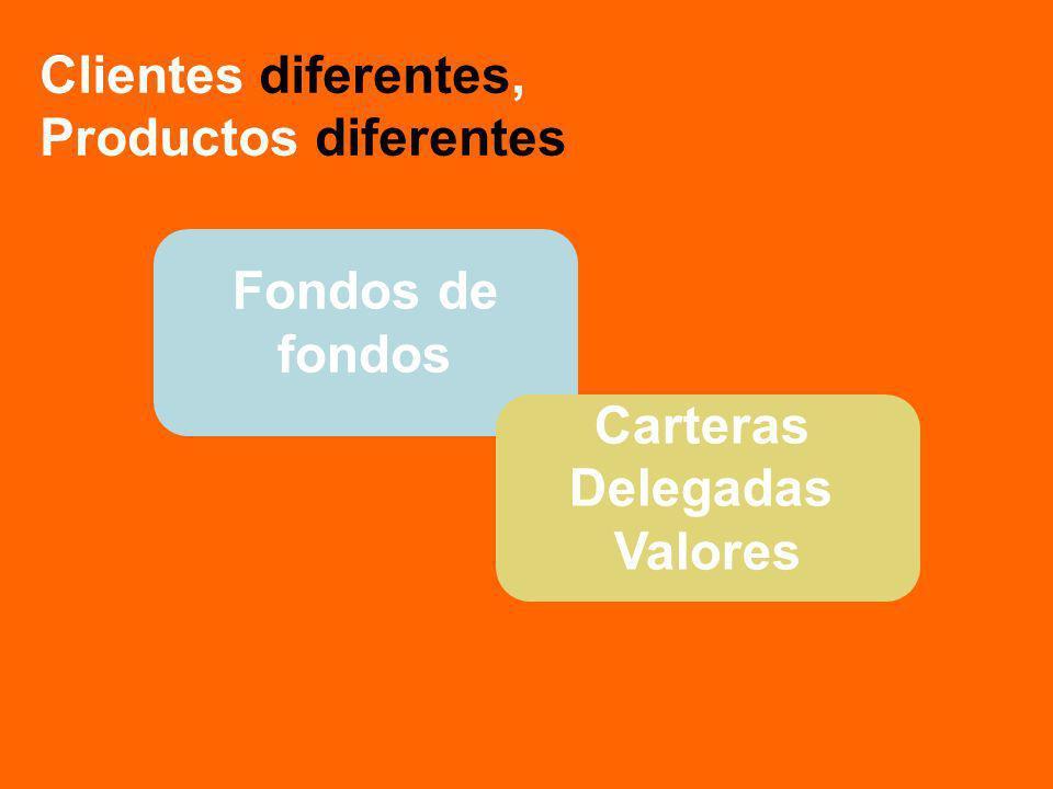 Fondos de fondos Carteras Delegadas Valores Clientes diferentes, Productos diferentes