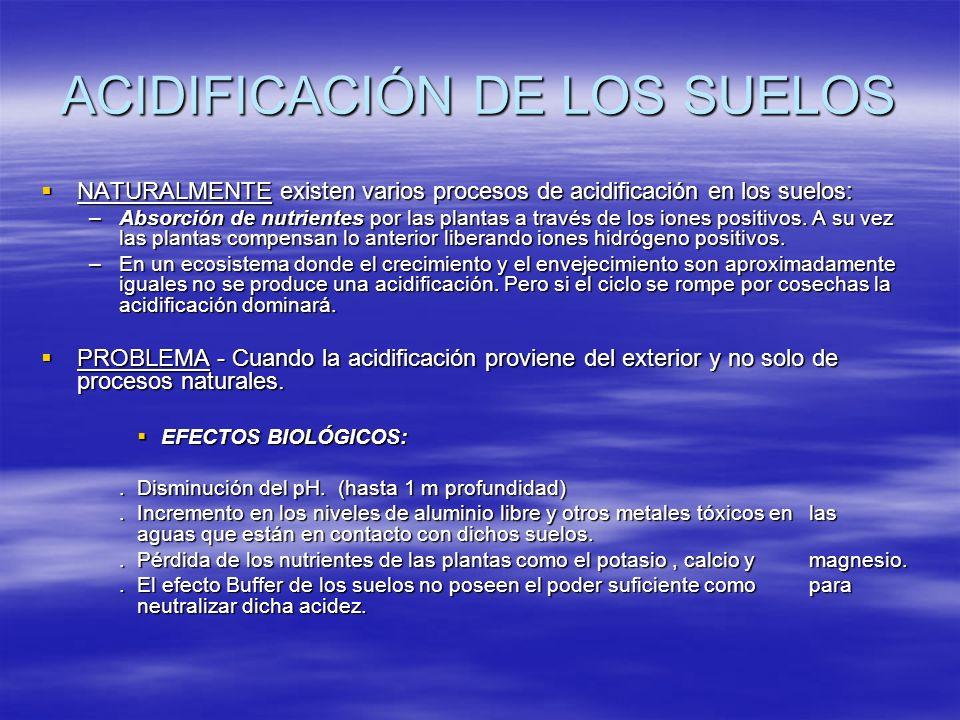 ACIDIFICACIÓN DE LOS SUELOS NATURALMENTE existen varios procesos de acidificación en los suelos: NATURALMENTE existen varios procesos de acidificación