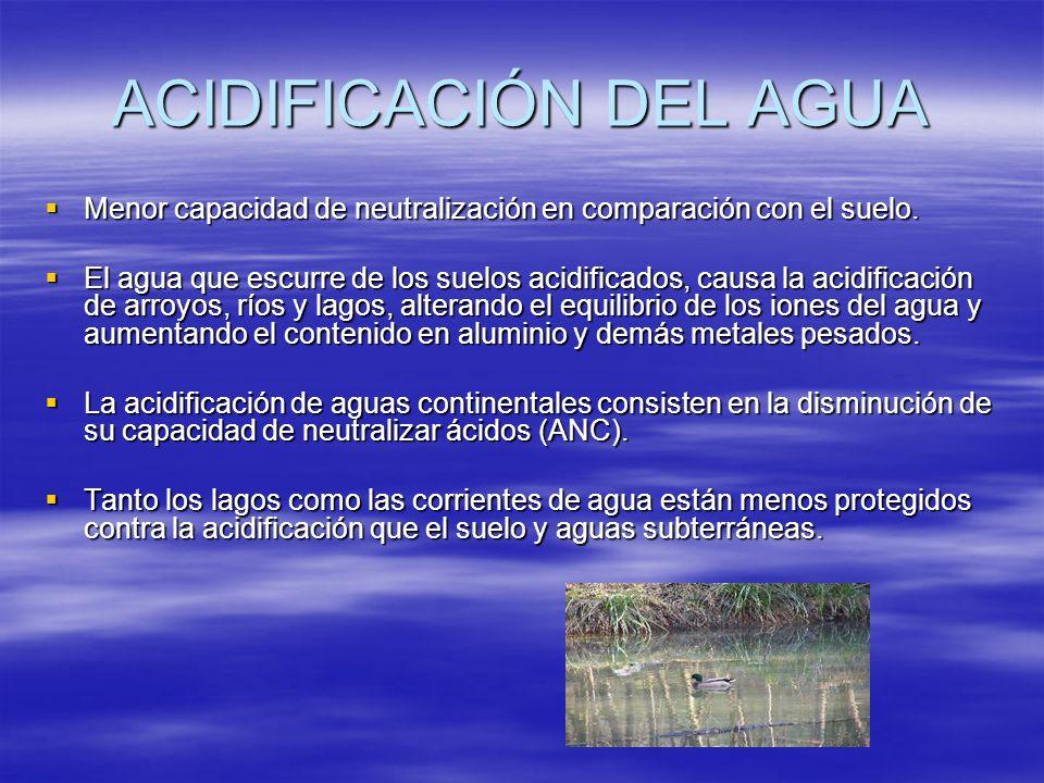 ACIDIFICACIÓN DEL AGUA Menor capacidad de neutralización en comparación con el suelo. Menor capacidad de neutralización en comparación con el suelo. E