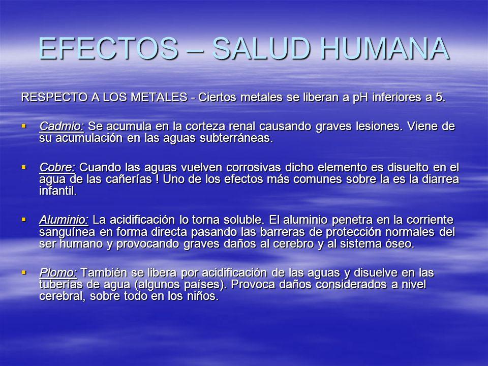 EFECTOS – SALUD HUMANA RESPECTO A LOS METALES - Ciertos metales se liberan a pH inferiores a 5. Cadmio: Se acumula en la corteza renal causando graves