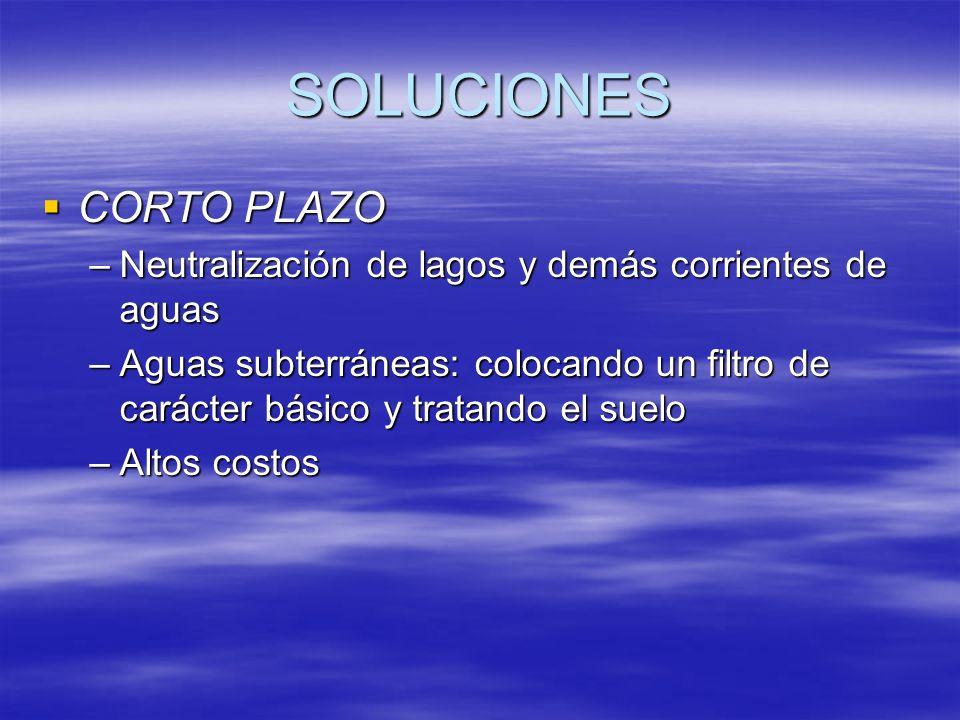 SOLUCIONES CORTO PLAZO CORTO PLAZO –Neutralización de lagos y demás corrientes de aguas –Aguas subterráneas: colocando un filtro de carácter básico y