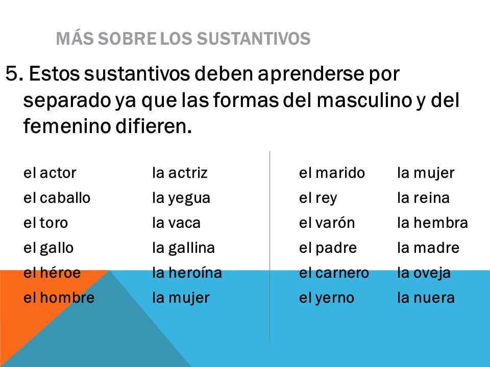 MÁS SOBRE LOS SUSTANTIVOS 5. Estos sustantivos deben aprenderse por separado ya que las formas del masculino y del femenino difieren. el actor la actr