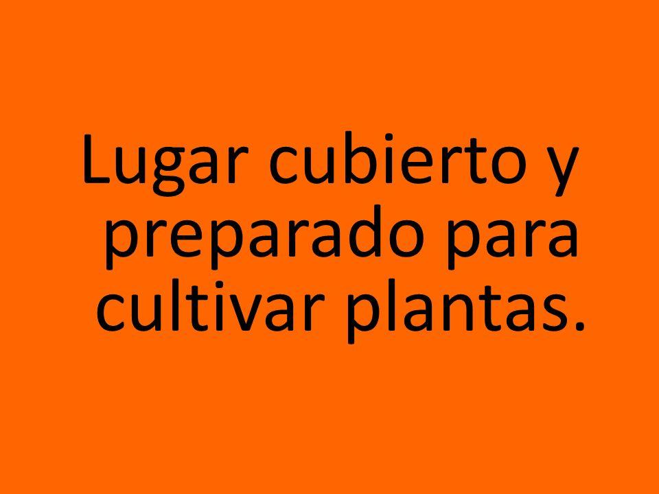 Lugar cubierto y preparado para cultivar plantas.