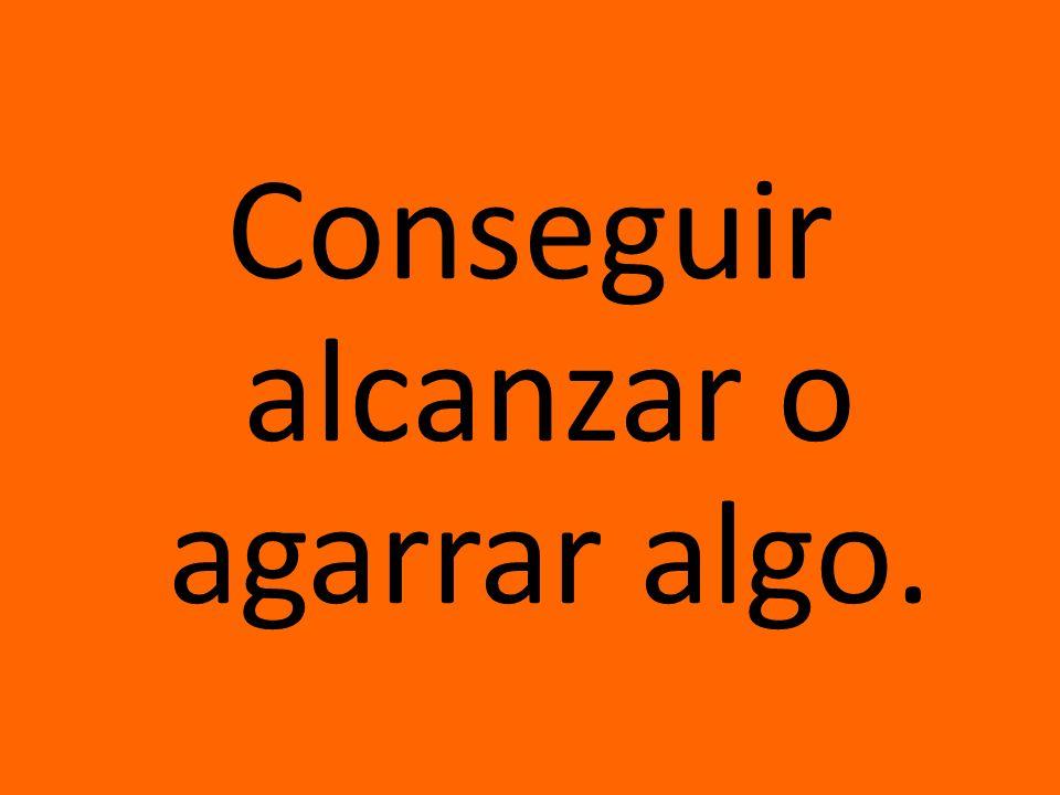 contenedor