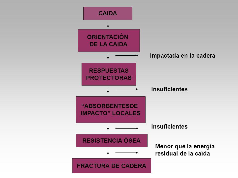 CAIDA ORIENTACIÓN DE LA CAIDA RESPUESTAS PROTECTORAS ABSORBENTESDE IMPACTO LOCALES RESISTENCIA ÓSEA FRACTURA DE CADERA Impactada en la cadera Insuficientes Menor que la energía residual de la caída