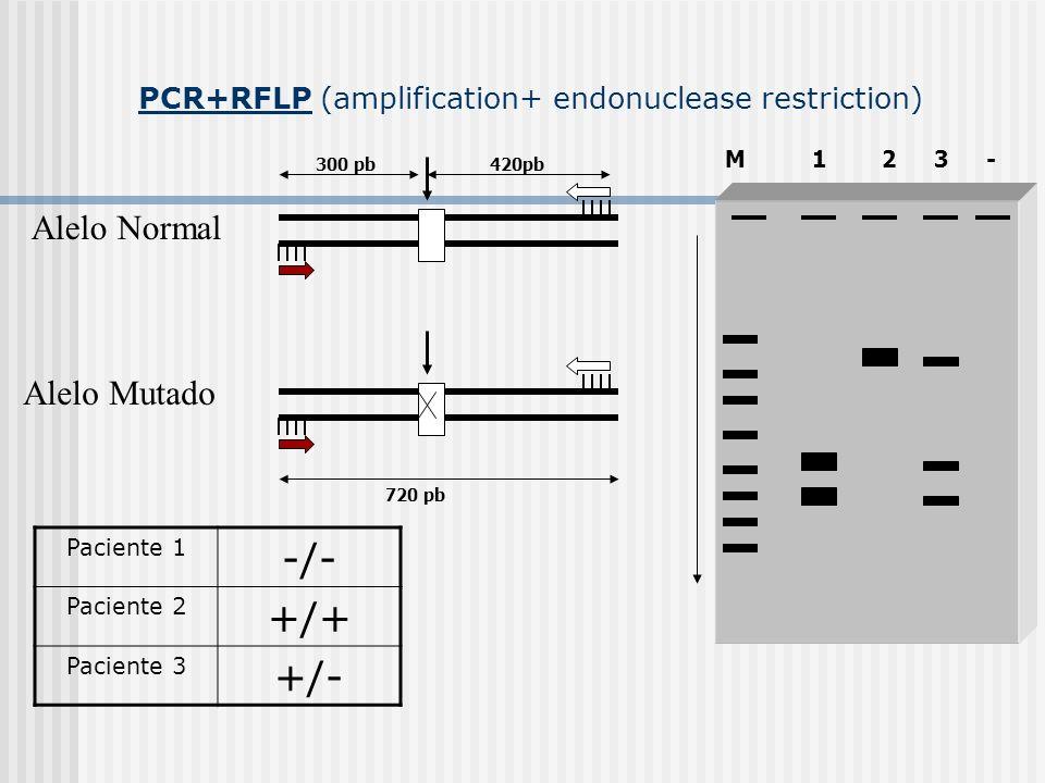 1- PCR-RFLP (amplification + endonuclease restriction)