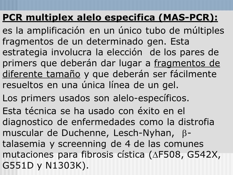 Modelo de Informe Análisis de Mutaciones en el gen CFTR Metodología: Amplificación por PCR a partir de ADN purificado de leucocitos. Mutagénesis dirig