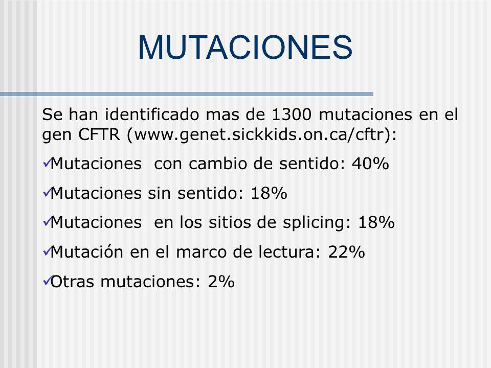 Modelo de Informe Análisis de Mutaciones en el gen CFTR Metodología: Amplificación por PCR a partir de ADN purificado de leucocitos.