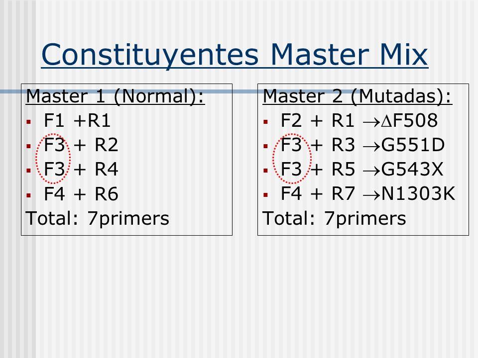 5IVS-21 N1303K-N N1303K-M g N y M:240 pb