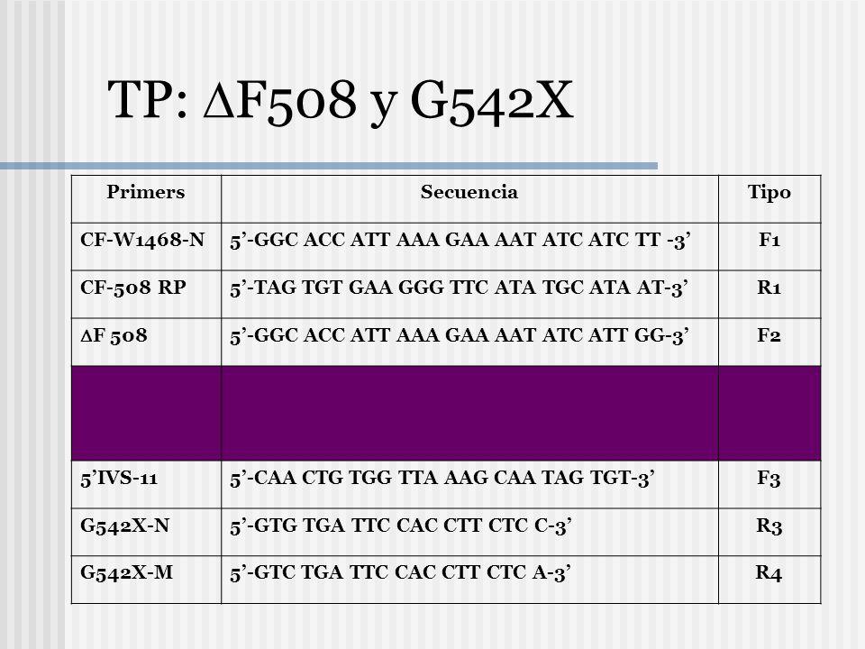 En los extremos Marquer de Peso Molecular (X174 digerido con Hae III). En las líneas 2,4, 6, 8 y 10 se usan los primers con las secuencias normales. L