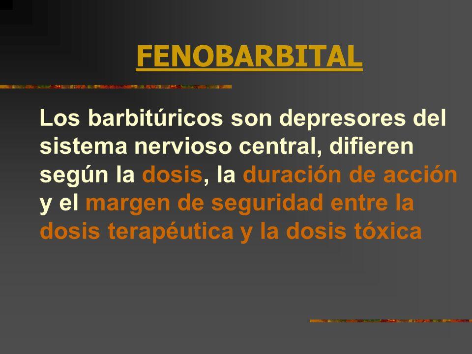 FENOBARBITAL Los barbitúricos son depresores del sistema nervioso central, difieren según la dosis, la duración de acción y el margen de seguridad ent