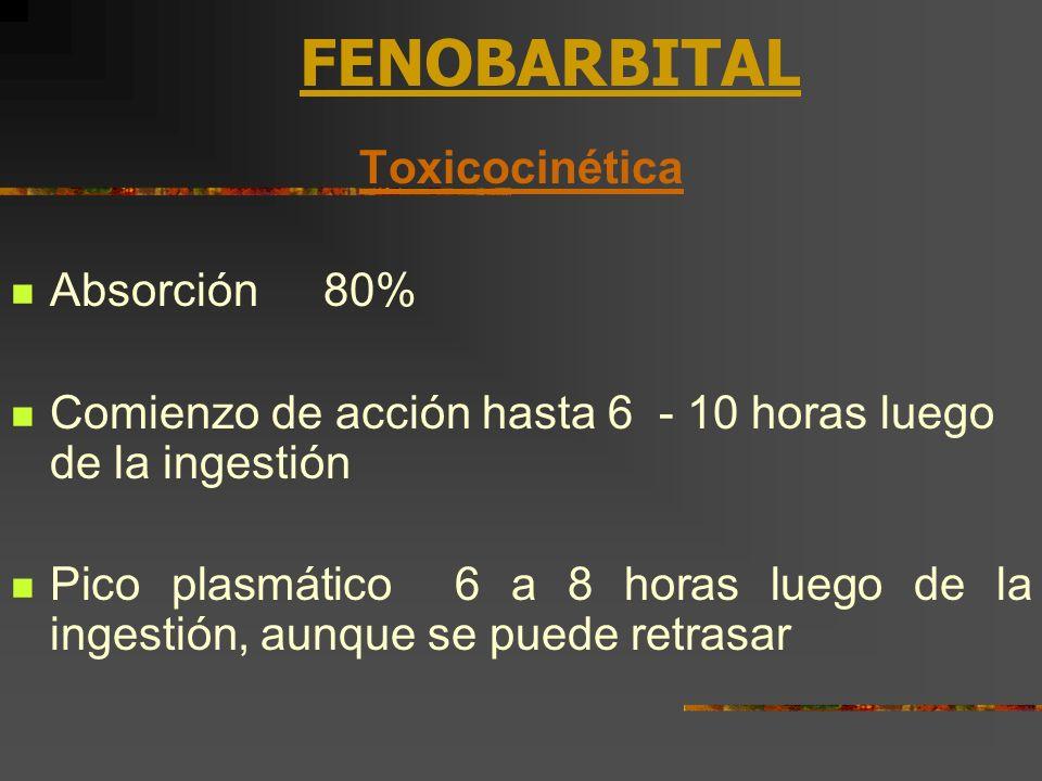 FENOBARBITAL Toxicocinética Absorción80% Comienzo de acción hasta 6 - 10 horas luego de la ingestión Pico plasmático 6 a 8 horas luego de la ingestión