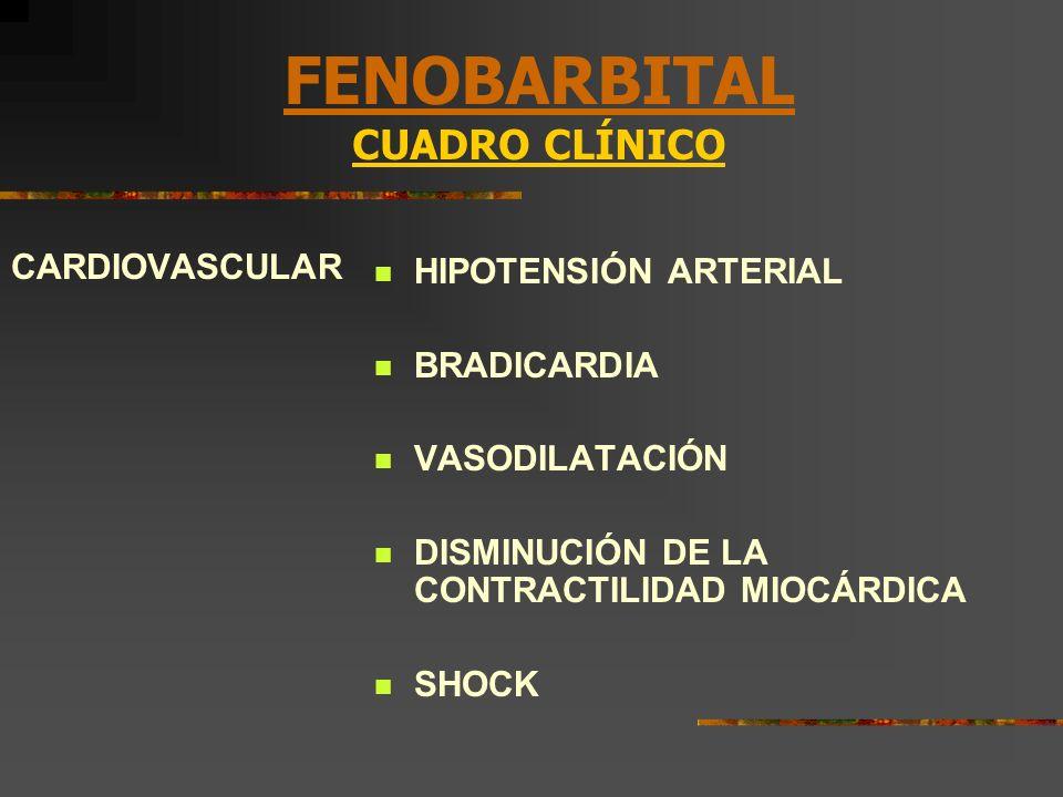 FENOBARBITAL CUADRO CLÍNICO CARDIOVASCULAR HIPOTENSIÓN ARTERIAL BRADICARDIA VASODILATACIÓN DISMINUCIÓN DE LA CONTRACTILIDAD MIOCÁRDICA SHOCK