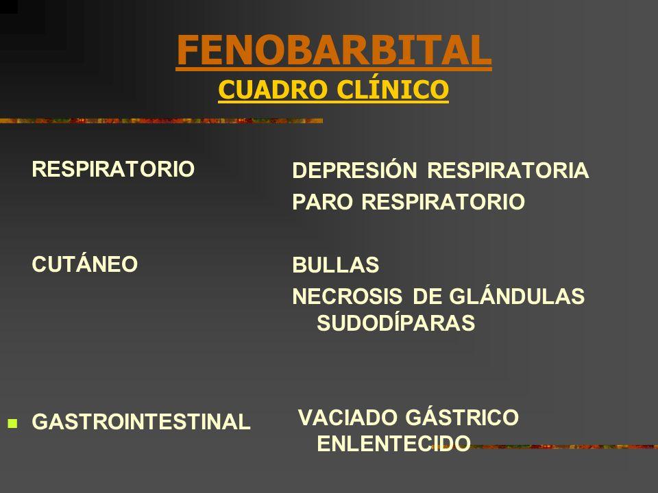 FENOBARBITAL CUADRO CLÍNICO RESPIRATORIO CUTÁNEO GASTROINTESTINAL DEPRESIÓN RESPIRATORIA PARO RESPIRATORIO BULLAS NECROSIS DE GLÁNDULAS SUDODÍPARAS VA