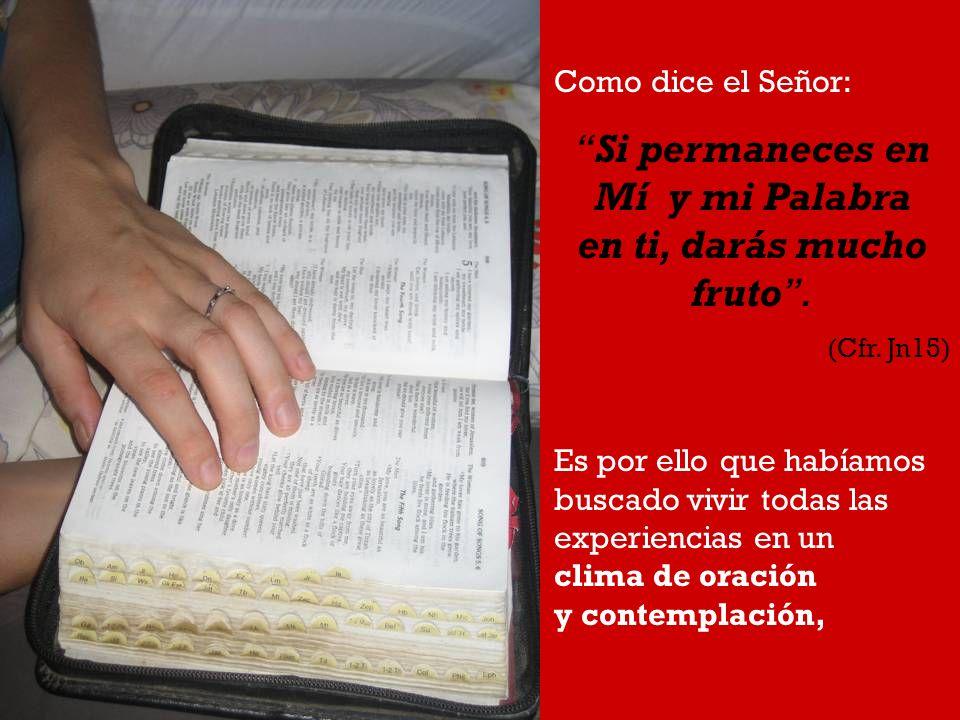 Como dice el Señor: Si permaneces en Mí y mi Palabra en ti, darás mucho fruto. (Cfr. Jn15) Es por ello que habíamos buscado vivir todas las experienci