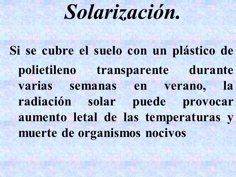 Solarización. Si se cubre el suelo con un plástico de polietileno transparente durante varias semanas en verano, la radiación solar puede provocar aum
