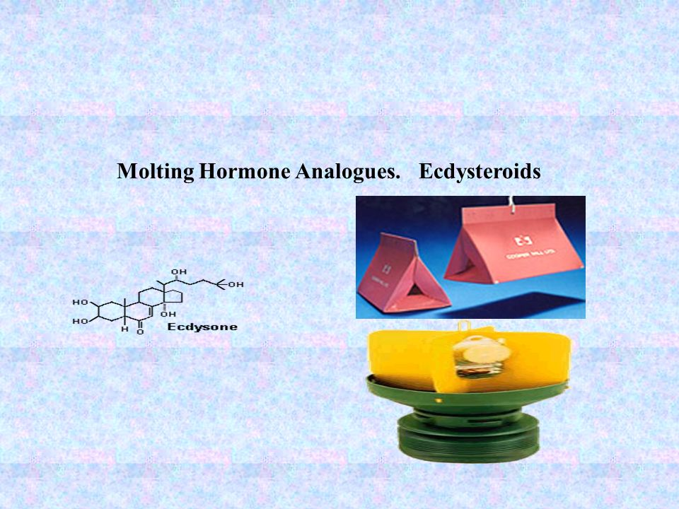 Molting Hormone Analogues. Ecdysteroids