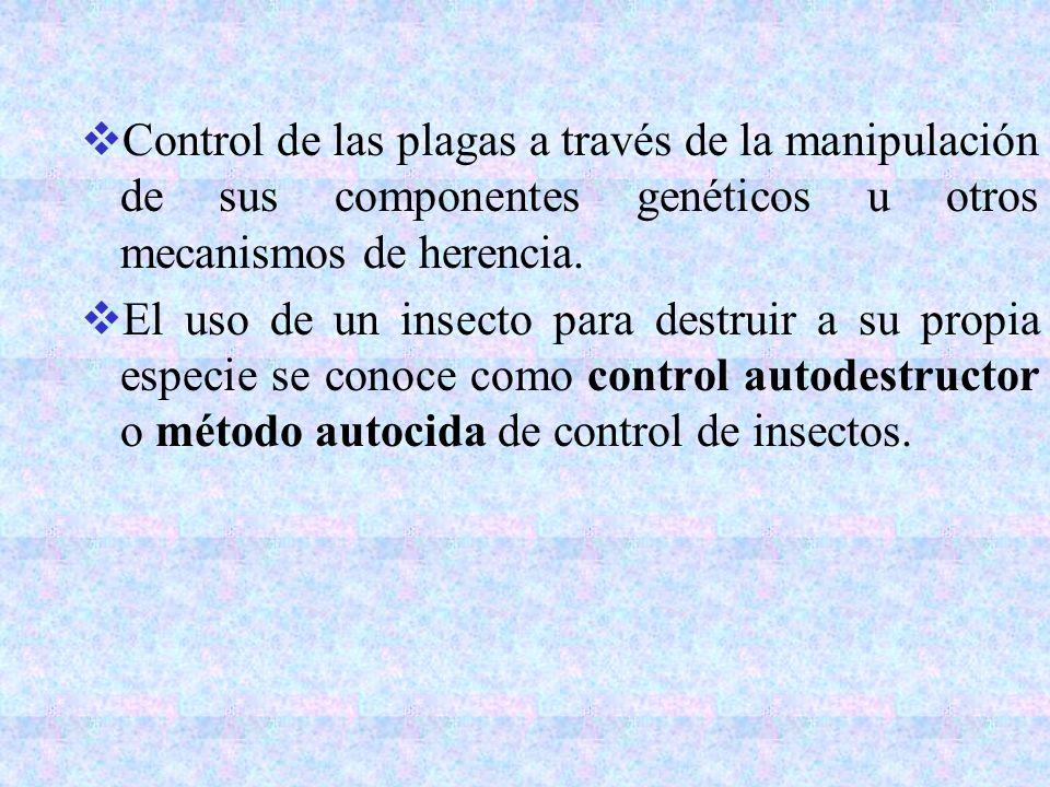 Control de las plagas a través de la manipulación de sus componentes genéticos u otros mecanismos de herencia. El uso de un insecto para destruir a su