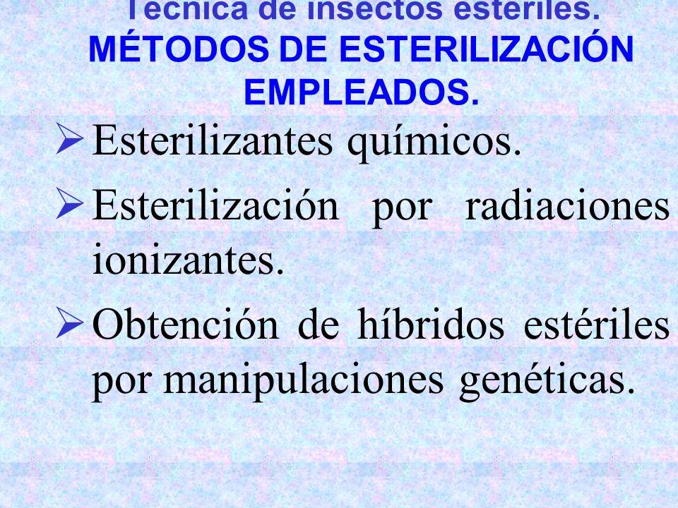 Manipulaciones genéticas: Técnica de insectos estériles. MÉTODOS DE ESTERILIZACIÓN EMPLEADOS. Esterilizantes químicos. Esterilización por radiaciones
