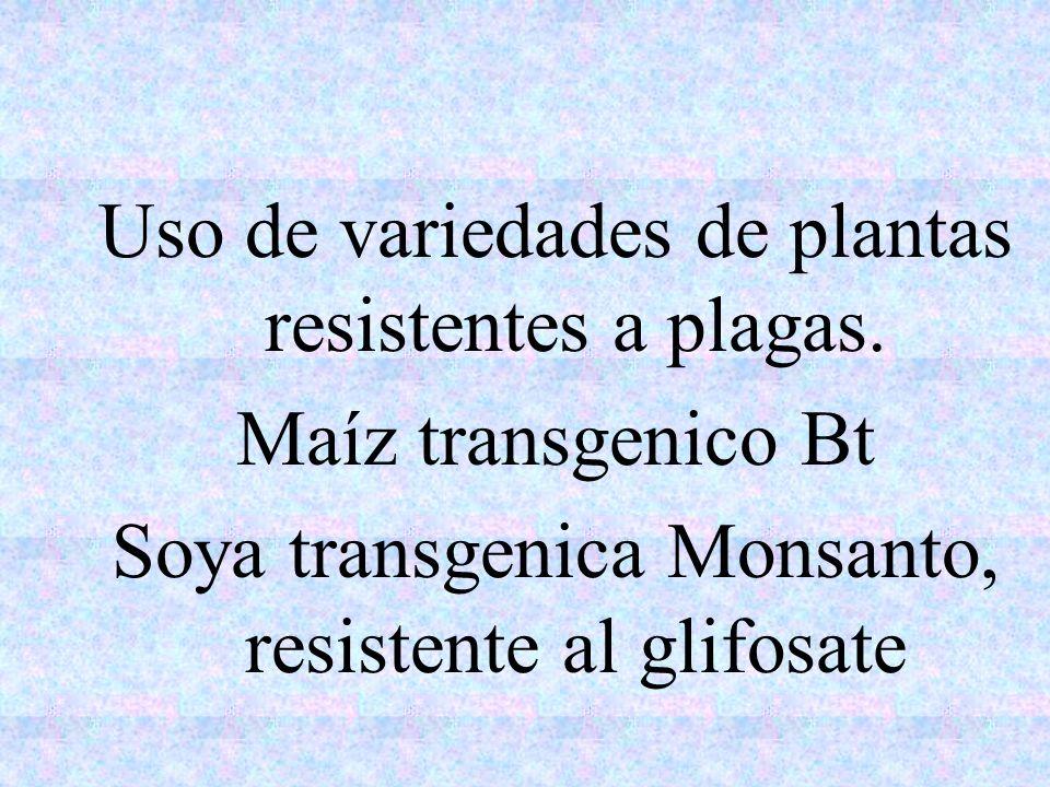 Uso de variedades de plantas resistentes a plagas. Maíz transgenico Bt Soya transgenica Monsanto, resistente al glifosate