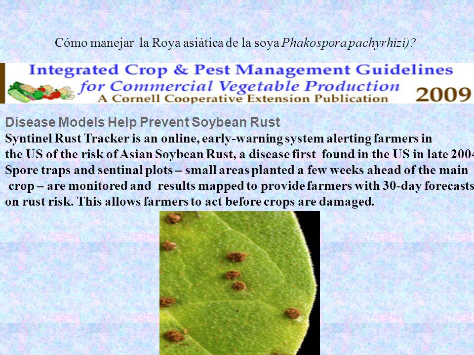 Cómo manejar la Roya asiática de la soya Phakospora pachyrhizi)? Disease Models Help Prevent Soybean Rust Syntinel Rust Tracker is an online, early-wa