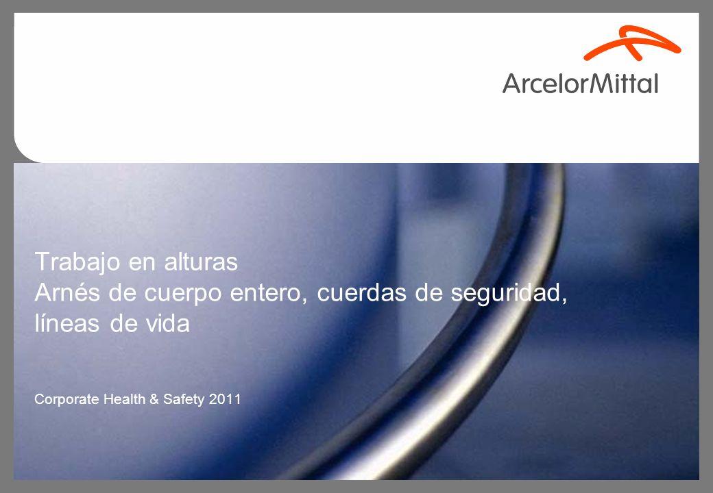Trabajo en alturas Arnés de cuerpo entero, cuerdas de seguridad, líneas de vida Corporate Health & Safety 2011